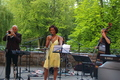 Jazz in Fürth on the openair stage Freilichtbühne in the city park - Willetta Carson and musicians, Jun 14, 2011